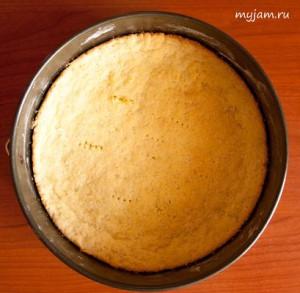 korg_dlya_ piroga_корж_для_пирога