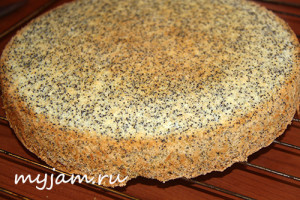 Маковый бисквит для торта